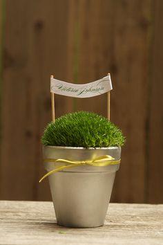 http://www.projectwedding.com/wedding-ideas/diy-moss-pots/1