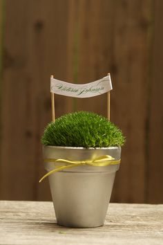http://www.projectwedding.com/wedding-ideas/diy-moss-pots/1