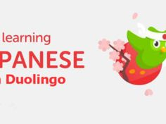 Learning Japanese on Duolingo is simple, fun and easy. Most people actually ask if it is possible to learn Japanese without a Japanese teacher Japanese Teacher, Learning Japanese, Daily Goals, Make Up Your Mind, You Really, Knowing You, Effort, Tv Series, Language