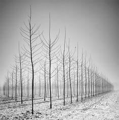 Mejores fotografía en blanco y negro