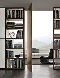 what a beautiful view through floor to ceiling bookshelves and frameless door!