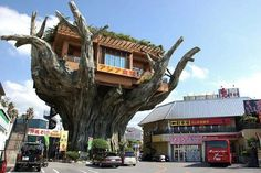 Japanese Treehouse Diner Opens 20-Feet Above The Ground