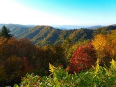 How Did the Mountains Get Their Names?  When you visit the Great Smoky Mountains National Park, you will experience pure relaxation as you take in the mountain scenery and crisp mountain air. Have you ever wondered where the mountains got their names? Here's what we know...  - Click the pin to keep reading!