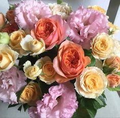 Wholesale Florist, Buy Wholesale, Flowers Online, Blossoms, Wedding Flowers, Rose, Plants, Flowers, Pink