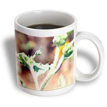 3dRose - Jos Fauxtographee Realistic - A Tiny Red Lady Bug With Black Spots on a Leaf - Mugs