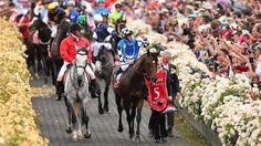 melbourne cup - Google Search S Cup, Melbourne Cup, Racing, Horses, Google Search, Animals, Running, Animales, Animaux
