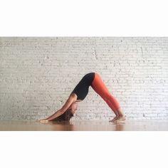 urdhva mukha svanasana   wearing hyde yoga organic cotton long cami & wren…