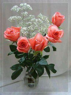 :-):-) Flowers Gif, Beautiful Rose Flowers, Beautiful Gif, Pink Flowers, Beautiful Flowers, Love Heart Images, Bonsai Garden, Flower Centerpieces, Flower Frame