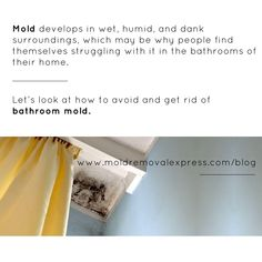 Beware that mold can also grow on various damp components, including shower curtains, in the grout of the shower, drywall, wallpapers, and on fabrics in the bathrooms such as hanging towels or underneath rugs. Let's look at how to avoid and get rid of bathroom mold. #bathroommold #denverhomes #boulderhomes #fortcollinshomes
