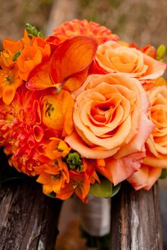 Option for bridesmaid bouquet.  Mixture of flowers in orange shades.