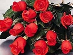 Richard Clayderman Lady in Red.wmv (+playlist)