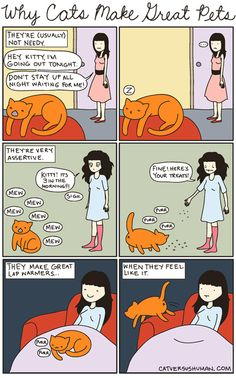 cat versus human, comics, comic strips, animals, cats