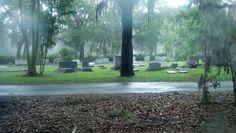 Rainy day in Savannahs most beautiful Cemetary