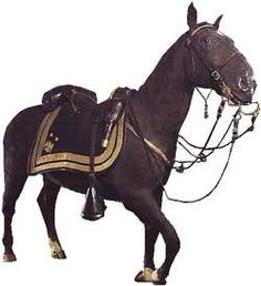 Winchester, General Philip Sheridan's horse in the civil war