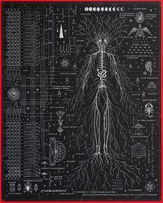 Philosophy of Science ii, 24″x 29.8″, Archival Print – Daniel Martin Diaz Illustration Photo, Philosophy Of Science, Les Chakras, Sacred Geometry Art, Esoteric Art, Spirit Science, Occult Art, Anatomy Art, Art Graphique