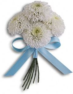 Boutonniere - white button chrysanthemums tied with a blue satin ribbon