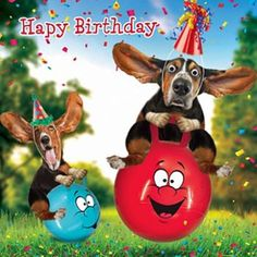 The Number Happy Birthday Meme Happy Birthday Status, Happy Birthday Dog, Happy Birthday Pictures, Happy Birthday Messages, Birthday Fun, Birthday Greetings Friend, Cute Birthday Wishes, Birthday Blessings, Funny Birthday Quotes