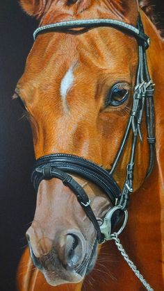 Hyperrealism acrylic painting of Red