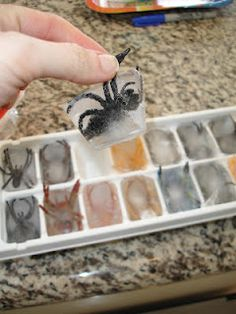 Spider Ice Cubes...attention..becky! (: