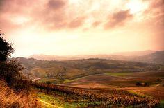 Misty 1st November on vineyards by Francesco Cetta on 500px