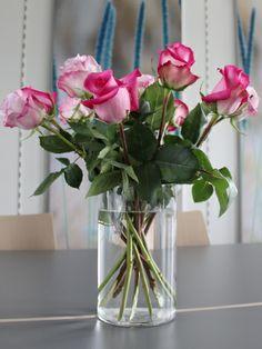 Rosen von Bloomstar - und ihre tausend Bedeutungen