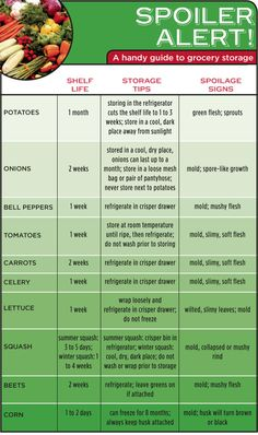 Spoiler Alert! A Handy Infographic Guide to the Shelf Life of Vegetables