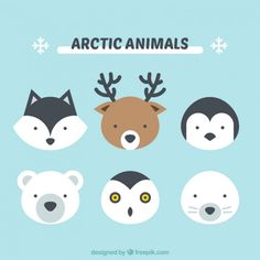 Cute arctic animals Vector | Free Download