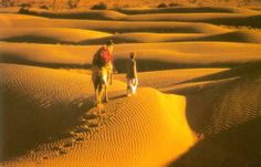 Trail the path of silky desert in Rajasthan.