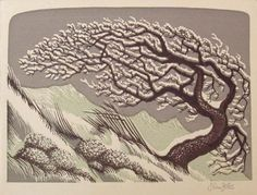 The White Thorn, John Petts, wood engraving Martin Tinney Gallery Linocut Prints, Art Prints, Block Prints, Christmas Art, Christmas Signs, Chalk Pastels, Wood Engraving, Woodblock Print, Tree Art