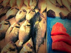 Salmon & Talapia at the Coventry farmers market by mickeyncube - Photo 129750755 - 500px