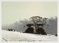 Peter Brook 'Misty Morning', 1975Peter Brook 1927–2009 Title Misty Morning Date 1975 Medium Lithograph on paper Dimensions Image: 508 x 711 mm Collection Tate © The estate of Peter Brook
