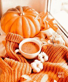 Halloween Tumblr, Halloween Post, Autumn Scenes, Autumn Aesthetic, Summer Aesthetic, Fall Pictures, Fall Pics, Fall Wallpaper, Autumn Inspiration