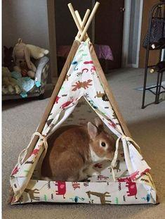 Bunny tepee