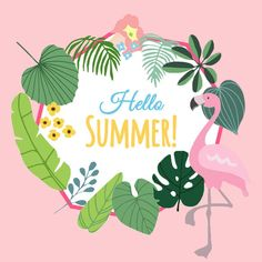 Pink flamingo tropical hello summer PNG and PSD Hello Kitty Backgrounds, Summer Backgrounds, Geometric Background, Background Patterns, Summer Wallpaper Phone, Summer Drawings, Black And White Picture Wall, Pink Hello Kitty, Wedding Background