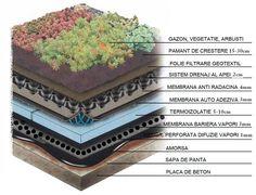 Amenajare terasa gradina