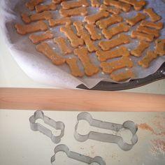 Des biscuits pour Monsieur Jarlsberg... - La Porte de Gauche
