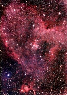 The heart nebula. I LOVE this thing. The beauty of it, and the fact that it exists.