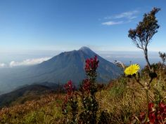 Merapi from merbabu