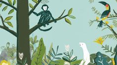 Darwin's On the Origin of Species: A Picture Book Adaptation by Sabina Radeva