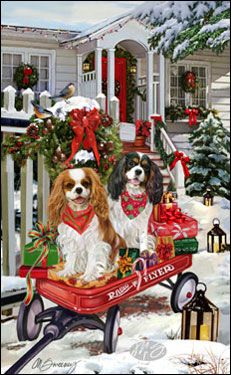 Cavalier - Christmas Welcome