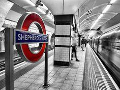 SHEPHERD'S BUSH STATIONPhoto: Nicholas Goodden