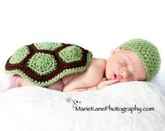 turtle turtle turtle things-i-love-3