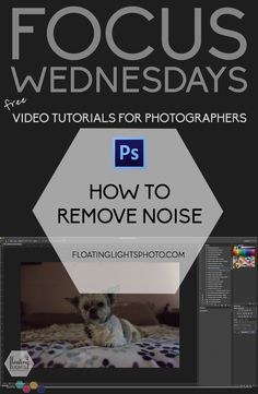 How To Remove Noise in Photoshop | Focus Wednesdays | Floating Lights Photography | #removenoise, #removegrain, #photoshoptutorial, #focuswednesdays