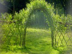 weidenzaun-selber-bauen-bogen-grün