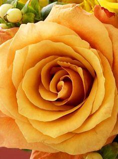 autumn-rose-bouquet2.jpg