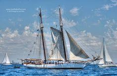 Tall Ship - Bill of Rights - Los Angeles Harbor, San Pedro, California