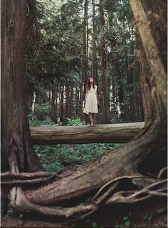Pacific Northwest. Forest. Trees. WHERE MY SOUL HAS NEVER FELT SO FREE. the true definition of peace. i long for it so badly. as soon as i get some money and naomi gets a little older we will be going with my dad and amanda every summer