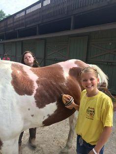#kidscamp #thingstodo #fun #horse