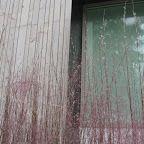 grass timber glass