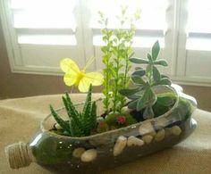Terrarium recycling plastic bottle / terranium in a recycled plastic bottle. Reuse Plastic Bottles, Plastic Bottle Crafts, Recycled Bottles, Plastic Bottle Planter, Plastic Recycling, Flower Vases, Flower Pots, Flowers, Garden Crafts